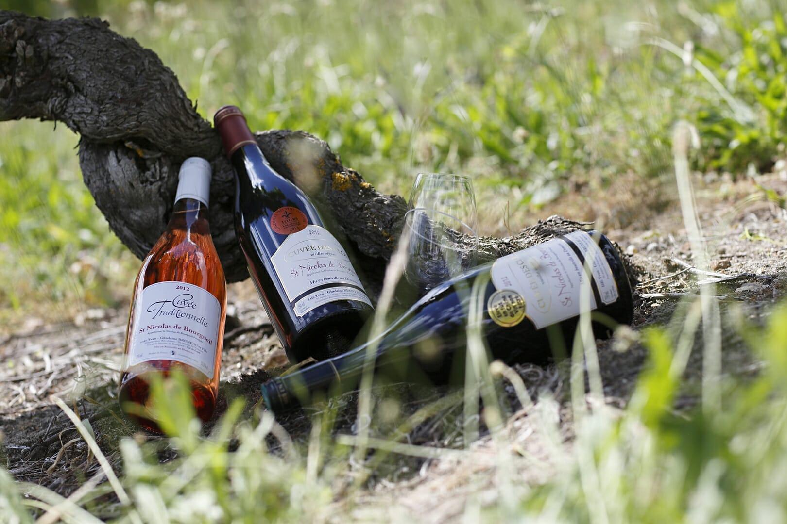 Domaine BRUNEAU Yvan Ghislaine et Damien Gamme de vins Saint Nicolas de Bourgueil