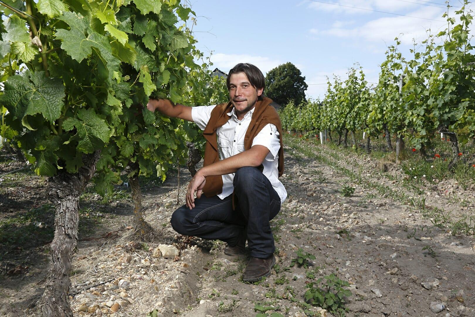 Domaine de l'asselière Mathieu LAMOUREUX dans les vignes à Saint Nicolas de Bourgueil