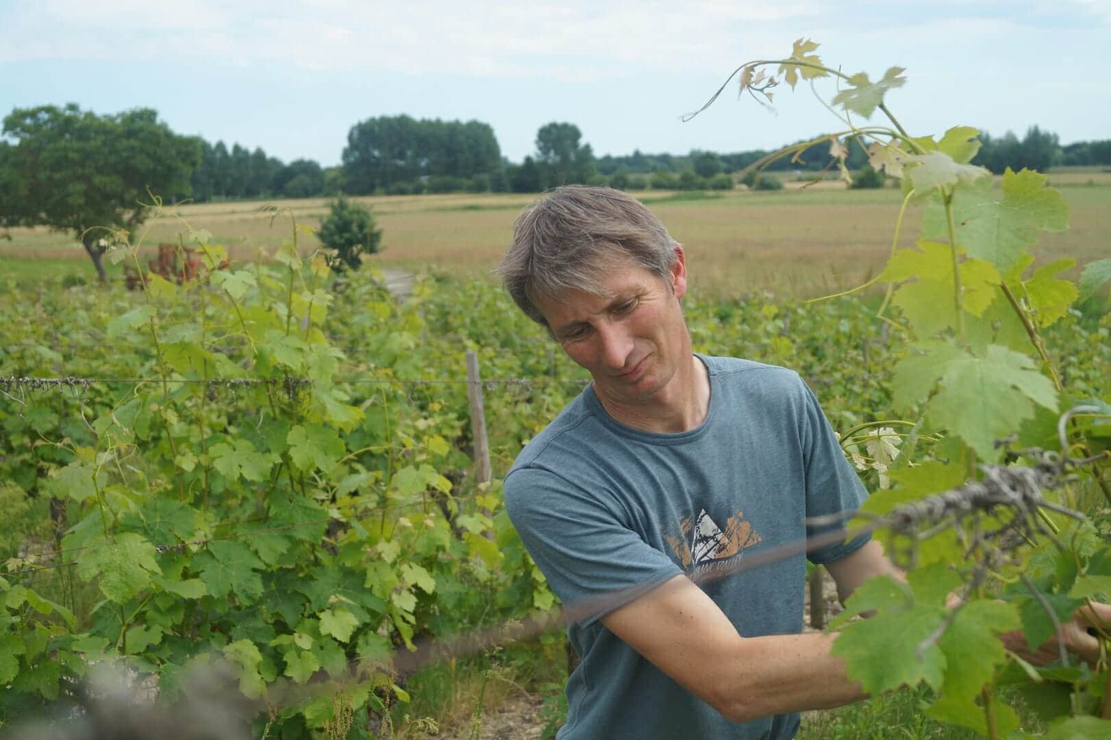 Domaine du Fondis Laurent JAMET
