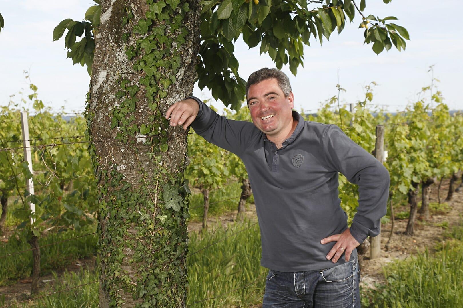 Les caves du Plessis Stéphane RENOU saint nicolas de bourgueil vignes