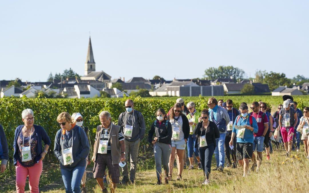Vignes Vins et Randos à Saint Nicolas de Bourgueil