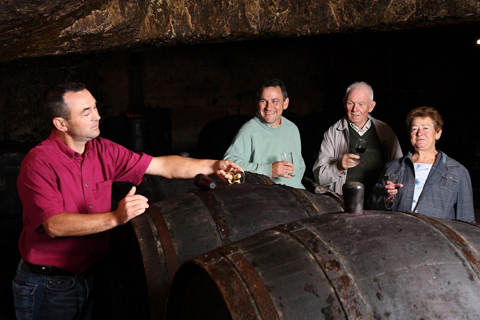 Vignoble de la roseraie en cave en famille