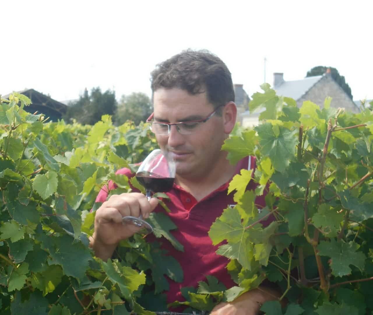 Vignoble du gros caillou patrice DELANOUE Saint Nicolas de Bourgueil