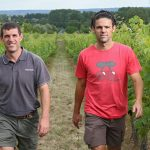 Vignobles des Robinières Bertrand et Vincent MARCHESSEAU in the vineyards