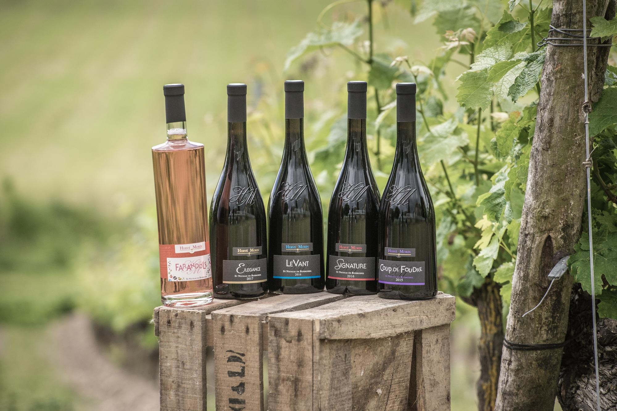 gamme de produits du domaine de la rodaie en vins de saint nicolas de bourgueil
