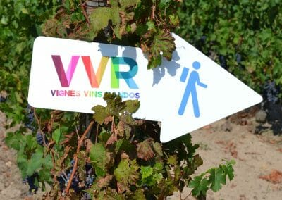 vignoble Saint Nicolas de Bourgueil | Pancarte VVR